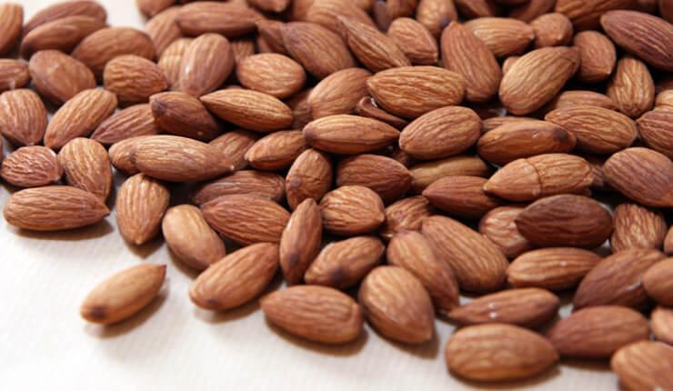 almond01